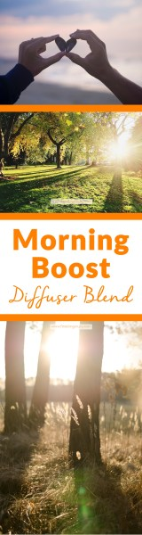 Morning Boost Diffuser Blend | Feasting On Joy