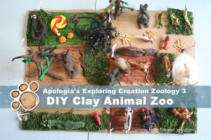 DIY Clay Animal Zoo {Apologia Zoology 3}