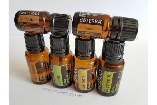 7 Tips to Travel Smart with Your Essential Oils 9 | Feasting On Joy