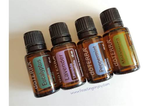 7 Tips to Travel Smart with Your Essential Oils 2 | Feasting On Joy