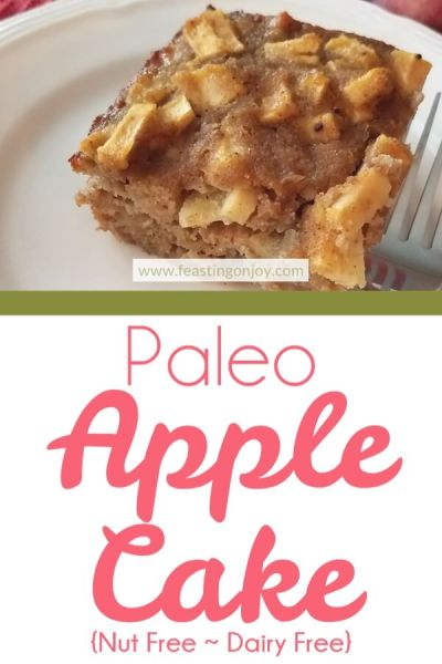 Paleo Apple Cake {Nut Free ~ Dairy Free} | Feasting On Joy