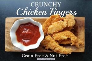 Crunchy Chicken Fingers   Grain, Gluten, Nut Free   Feasting On Joy