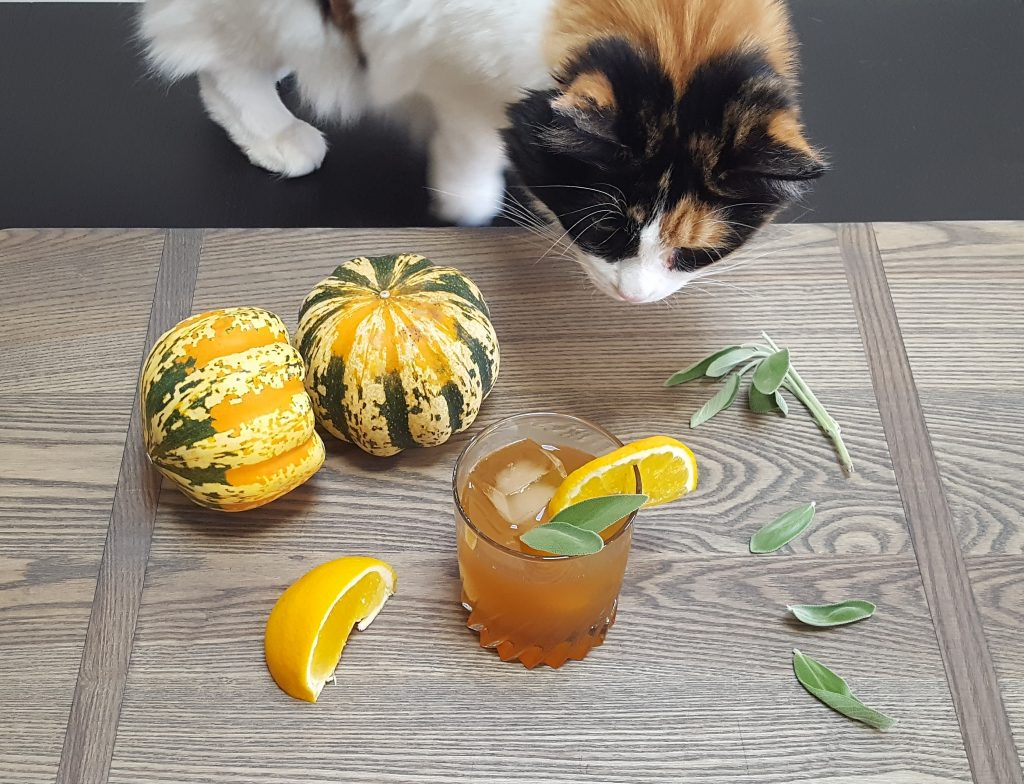 Honey Bear Bourbon Cocktail (& Midna) | Feast In Thyme