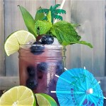 Named after the mythic sea witch, the Cecaelia is a dangerously potent blueberry rum tiki cocktail full of fresh juices and warm island spices. #tikiweird #tikicocktail #tikitime #blueberry #rum   FeastInThyme.com