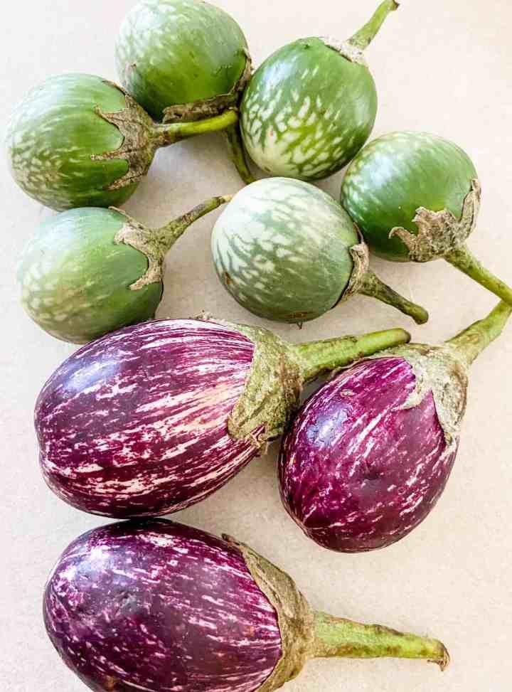 Small green eggplants(Ravaiya).
