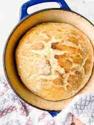 Best no-knead bread recipe