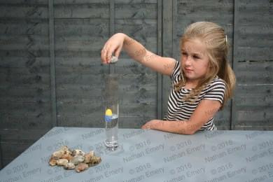 Child Aesops Fable Task