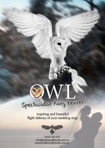 Owl Wedding Ring Bearer