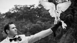 Owl Wedding Ring Bearer