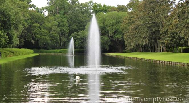 Reflecting Pool --Exploring The Enchanting Gardens Of Middleton Place