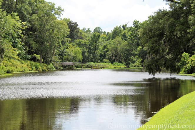 Mill Pond --Exploring The Enchanting Gardens Of Middleton Place