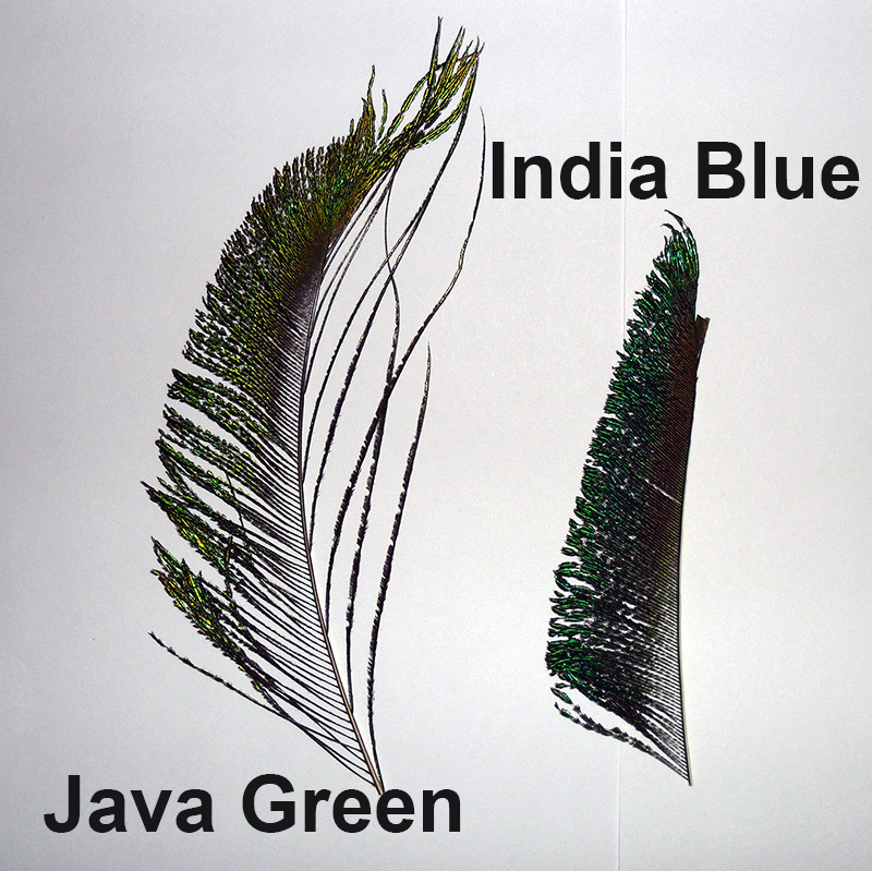 Java Green Peacock Swords