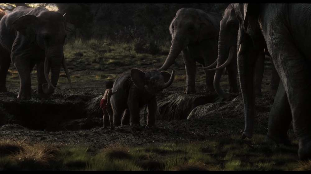 The Jungle Book Mowgli helping the Elphants