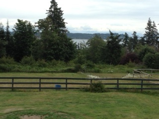view from Hanne's deck