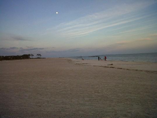 dauphin island2
