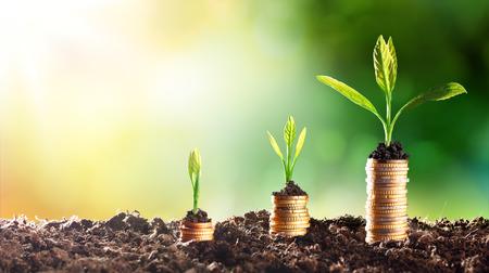 Ekonomi Islam dan Lingkungan