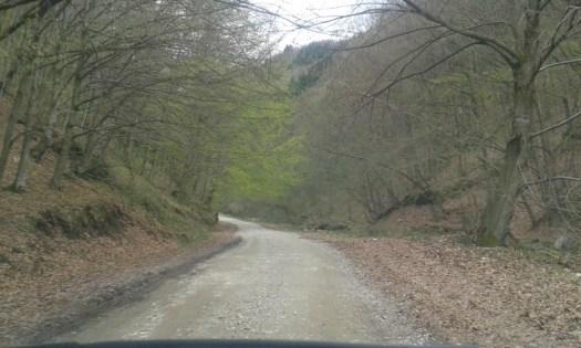 Drumul spre Sarmizegetusa Regia