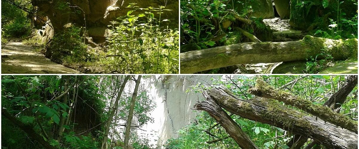 canionul mihaileni imagine featured