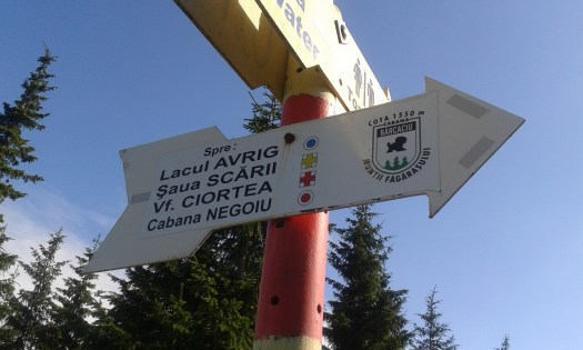 indicator trasee cabana barcaciu
