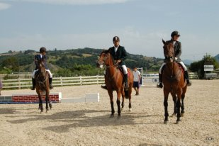 Cto. Cantabria 2012