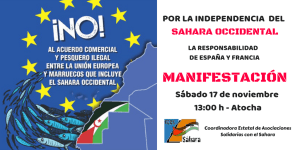 manifestacion-sahara-llibre-eucoco-2018-madrid-fedesaex