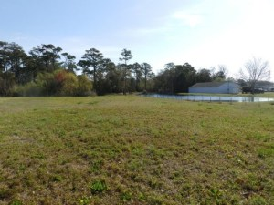 Lewis Park property