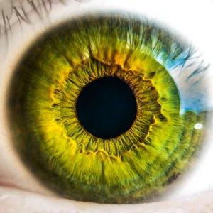 salud ojo federopticos lukus