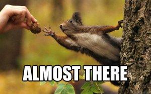 squirrelnut