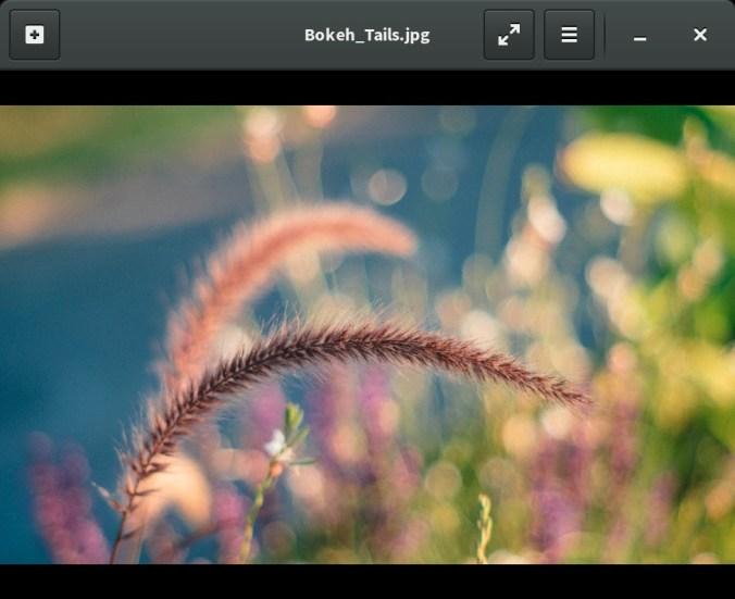image-viewer