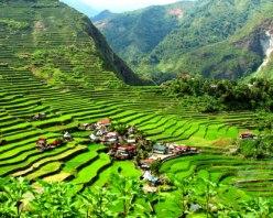 Banaue Rice Terraces, The Philippines