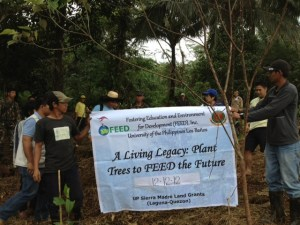 FEED Tree Planting