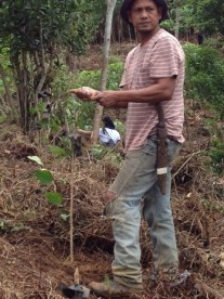 UPLB Contract Farmer