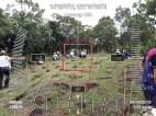 Hi-Las-Marketin-Corp-CSR-geo-tree-tags-FEED201820