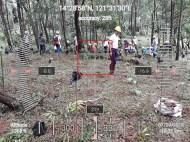Hi-Las-Marketin-Corp-CSR-geo-tree-tags-FEED20186