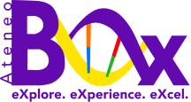 Copy of BOx Logo 2017