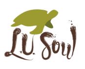 LU SOUL LOGO2