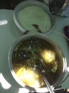 LUSC-CoralProp-Meals