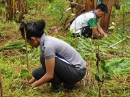 EcoMatcher-FEED-OurBetterWorld-1000Trees37