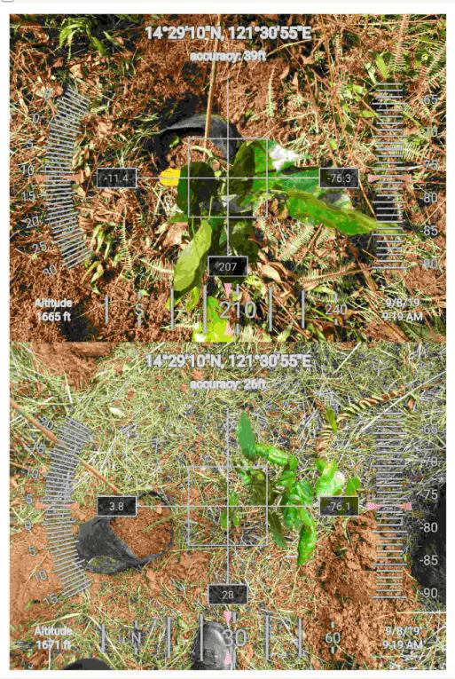 FEED-Planting-Kim-Namjoon-GPS-LQLG-6