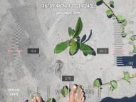 FEED-KARPOS-BOTONG-Planting-Urbiz-2710201916