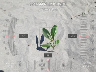 FEED-KARPOS-BOTONG-Planting-Urbiz-2710201920