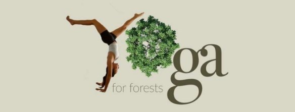 YogaForForests10