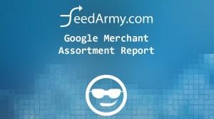 Google Merchant Assortment Report