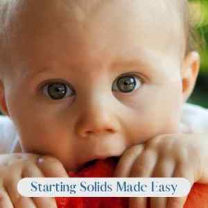 Starting Solids Made Easy Book Cover