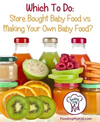 Which To Do: Buy Baby Food vs Or Make Homemade Baby Food ...