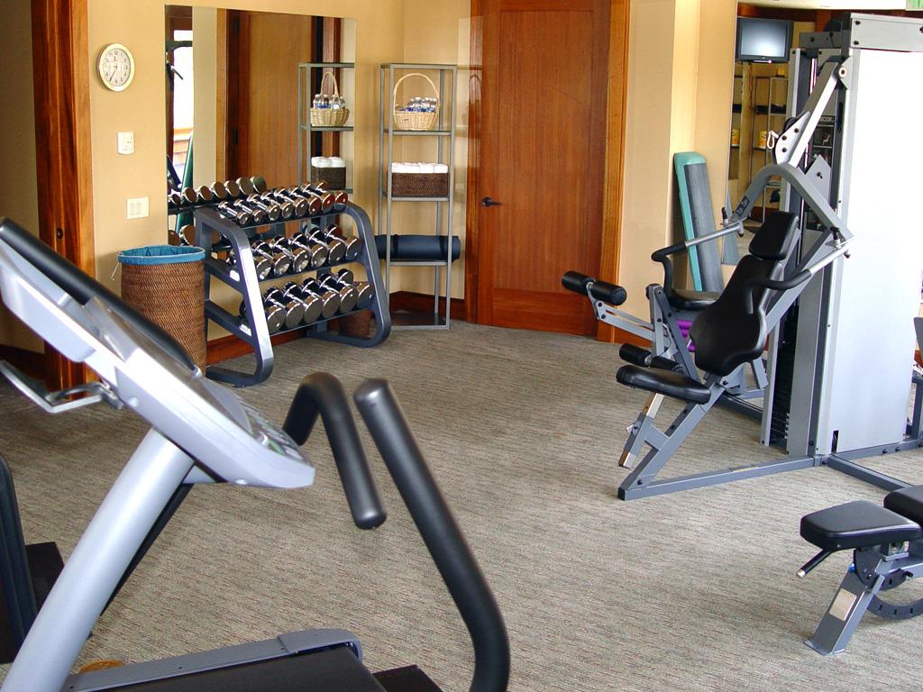 30 Home Gym Design Ideas