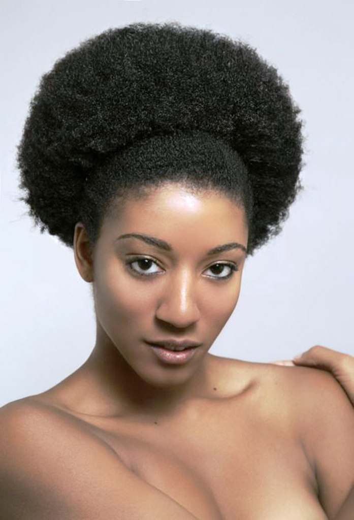 20 Afro Hairstyles For African American Womans  Feed Inspiration