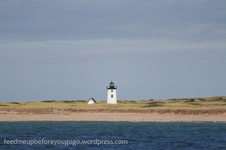 Provincetown Cape Cod kulinarisch Food Tipps und Travel Guide USA Ostküste