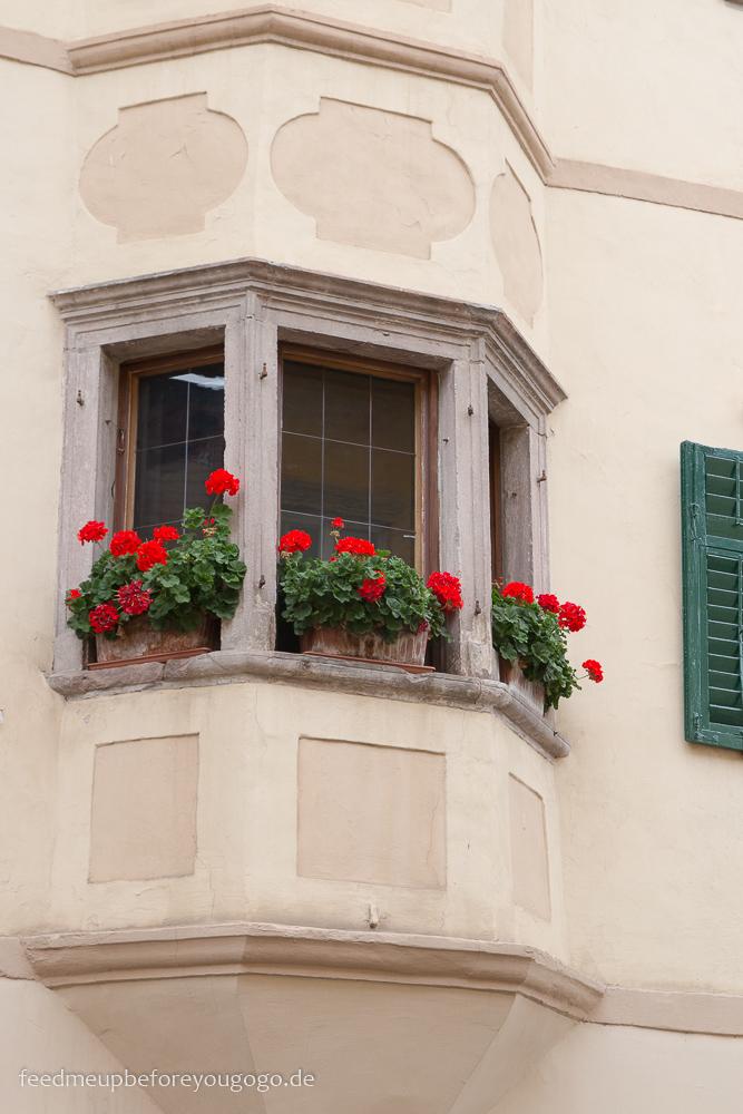 Fenster mit Blumen Kaltern Südtirol Italien Feed me up before you go-go