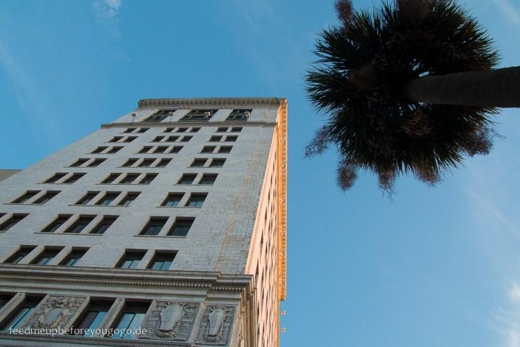 Savannah Georgia Palme Hochhaus Südstaaten